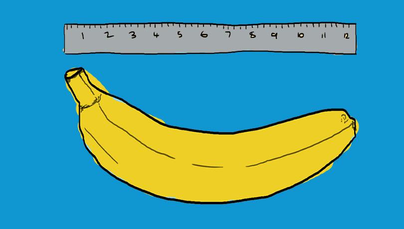طول الذكر الطبيعي