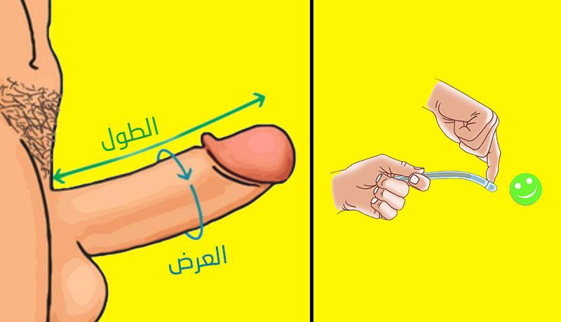 افضل طريقة -لتضخيم الذكر